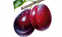 Prunele, medicament pentru sânge