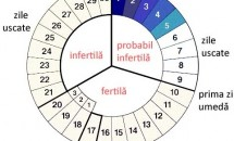 Metoda calendarului