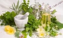 Fitoterapia: trateaza-te cu ajutorul plantelor medicinale