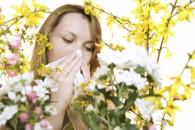 Tratamente naturiste împotriva alergiilor