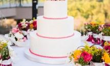Torturi de nunta roz: 25 de modele incredibile