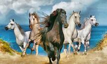 Ce inseamna cand visezi cai