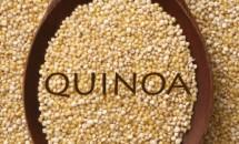 Ce este quinoa?