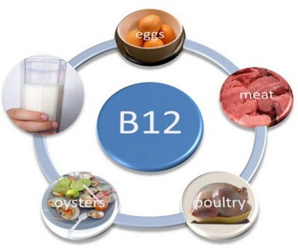 Vitamina B12: cel mai important nutrient
