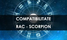 Compatibilitate Rac - Scorpion