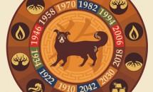 Zodia Câine din zodiacul chinezesc