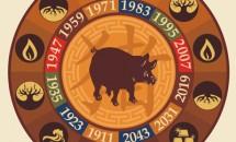 Zodia Porc din zodiacul chinezesc
