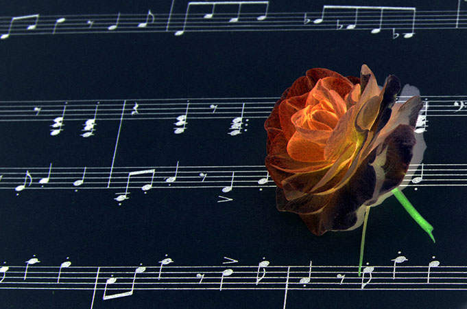 Cele mai frumoase melodii de dragoste