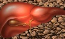 Ce se întâmplă cu ficatul tău dacă bei trei cești de cafea!