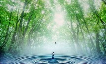 5 metode prin care îți poți purifica apa acasă la tine