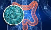 Cele mai bune 10 alimente recomandate pentru îmbunătăţirea florei intestinale