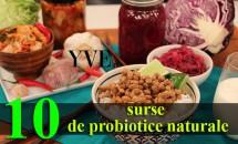 10 surse de probiotice naturale