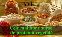 Cele mai bune surse de proteină vegetală