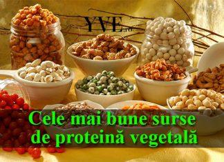 Proteina vegetală