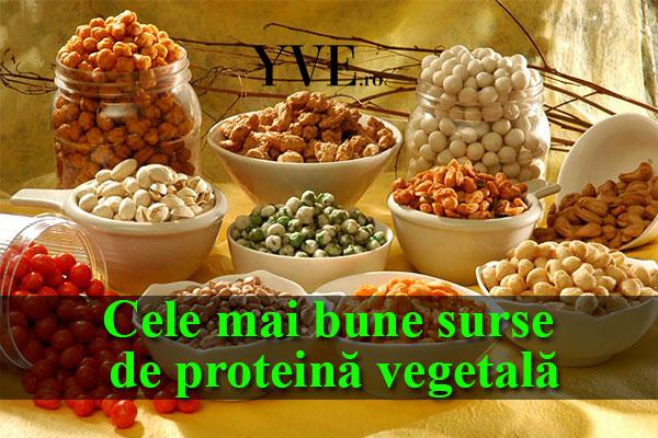 ce este proteina