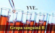 Grupa sanguină B