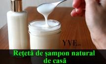 Reţetă de şampon natural de casă