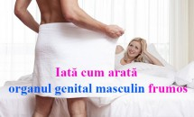Iată cum arată organul genital masculin frumos! Studiu publicat de o Revistă de Medicină Sexuală pentru a liniști bărbații
