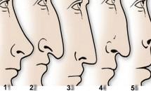 Iată ce secrete poți afla despre o persoană în funcție de forma nasului!
