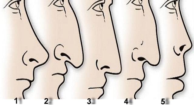 Iată-ce-secrete-poți-afla-despre-o-persoană-în-funcție-de-forma-nasului