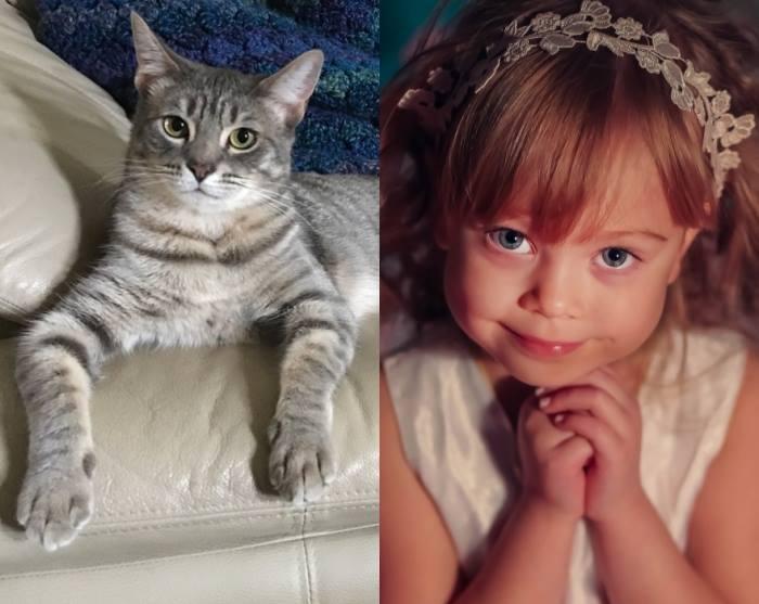 Citeşte ce mesaj a primit o fetiţă care i-a scris veterinarului despre pisica sa care a băut lapte cu căpşuni