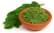 Moringa, arborele minune care vindecă 5 tipuri de cancer!