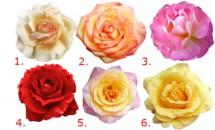 Testul trandafirului te ajută să te descoperi mai bine! Fă-l şi află ce fel de om eşti cu adevărat!