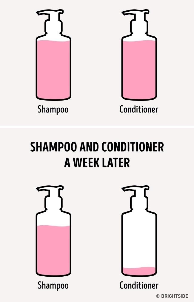 şampon