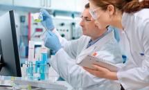 Incredibil! Această descoperire este primul pas pentru vindecarea cancerului!