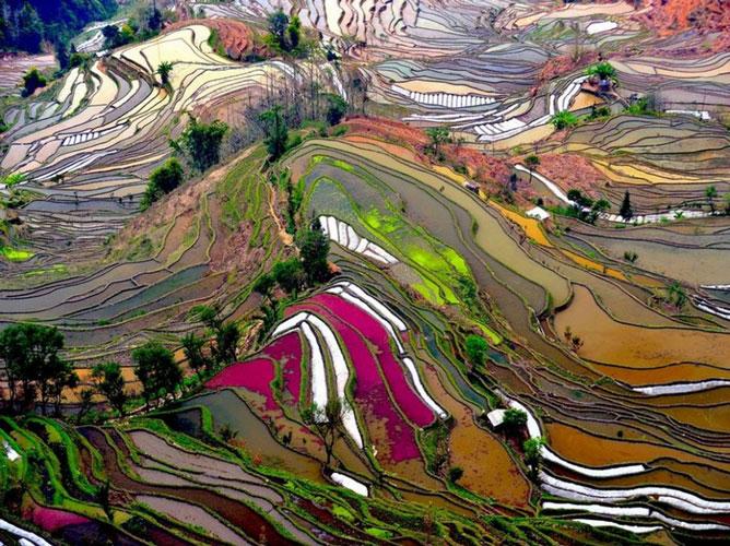 Țara-Yuanyang