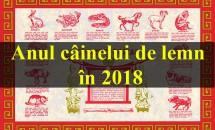 Anul câinelui de lemn în 2018