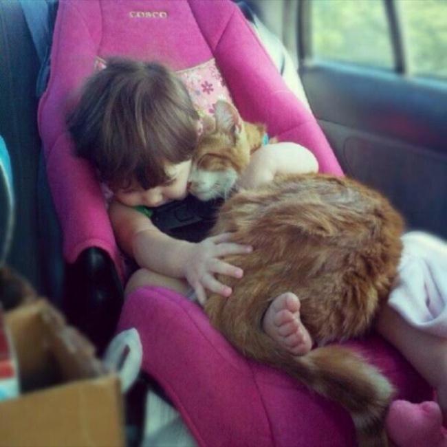 bebelusi si animale 12