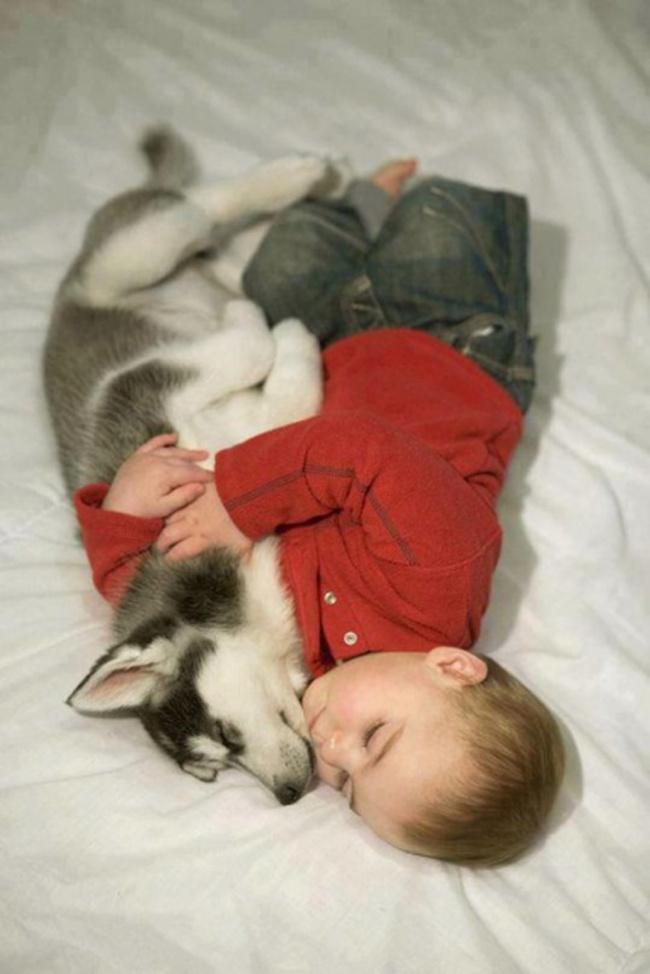 bebelusi si animale 14