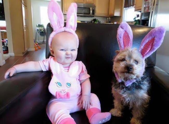 bebelusi si animale 16