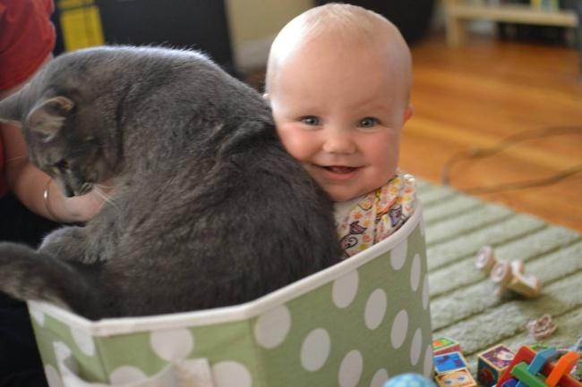 bebelusi si animale 7
