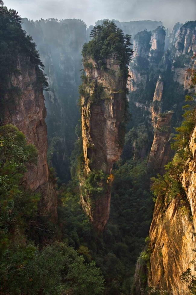 Stâncă în Parcul Național Zhangjiajie, China