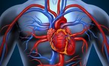 Când ar trebui să te îngrijoreze durerile de inimă?