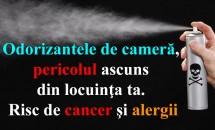 Odorizantele de cameră, pericolul ascuns din locuinţa ta. Risc de cancer şi alergii