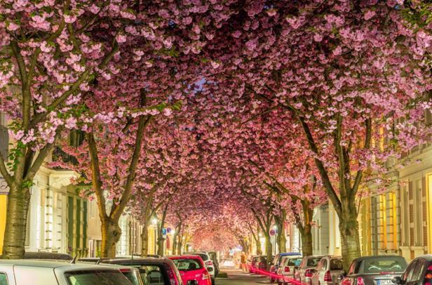 Bonn, Germania