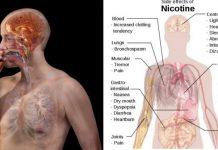 Elimina cantitatea exagerata de nicotina din organismul tau cu ajutorul acestor alimente!