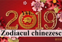 Zodiacul chinezesc 2019