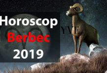Horoscop Berbec 2019